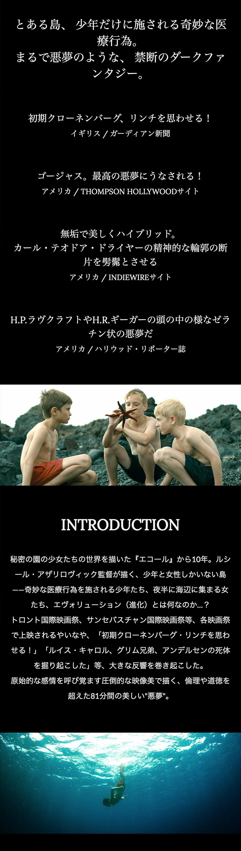 Sister x ルシール・アザリロヴィック監督 「エヴォリューション」